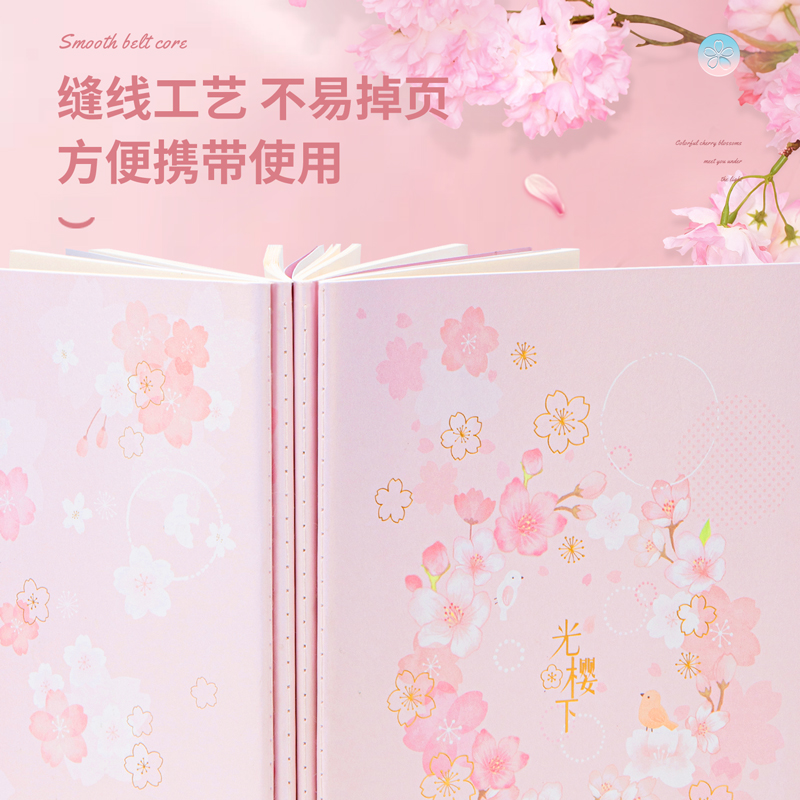 得力FA540缝线本(光樱下)(本)